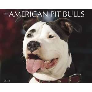 American Pit Bull Terriers 2012 Wall Calendar Office