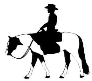 Paint/Pinto Western Pleasure Riding Horse Decal #241