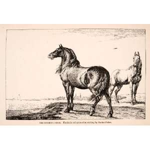 1891 Wood Engraving Horses Neighing Paulus Potter