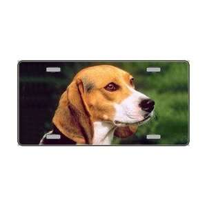Dog Pet Novelty License Plates  Full Color Photography License Plates