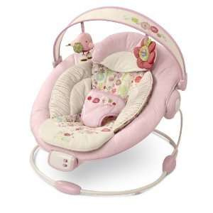 Bright Starts Comfort & Harmony Bouncer Baby Rocker NEW