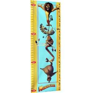 TG Madagascar Growth Chart   Magnetic Toys & Games