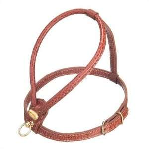Fashion Leather Dog Harness in Brown Size Large Pet